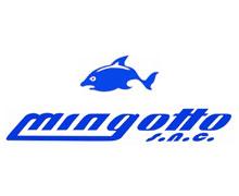 Mingotto